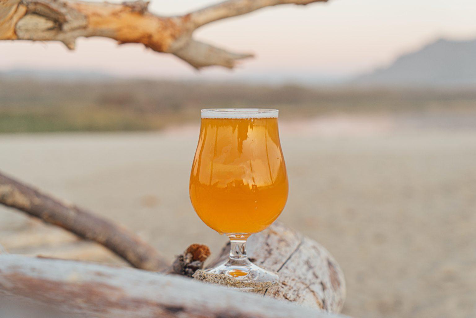 バーテンダーおすすめのおしゃれなビールグラス7選【クラフトビールを楽しもう】